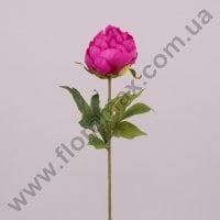 Квітка Півонія малинова 71250