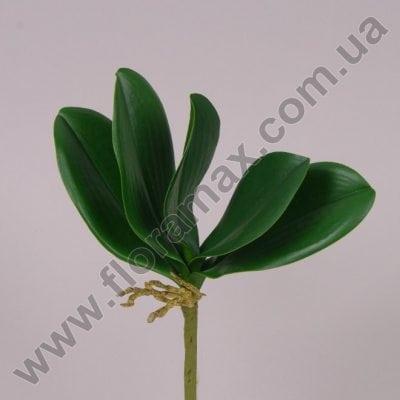 Фото Листья орхидеи искусственные 71387