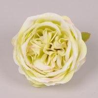 Головка Троянди англійської кремово-зелена 23742