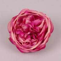 Головка Троянди англійської кремово-марсалова 23746