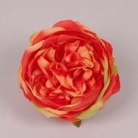 Головка Троянди англійської оранжева 23749