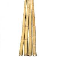 Жердина бамбукова 105см.