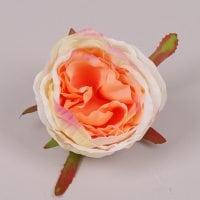Головка Троянди кремово-персикова 23760