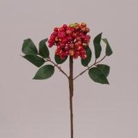 Ветка с красно-зелеными ягодами 71657