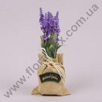 Лаванда в мешочке светло-фиолетовая 70673