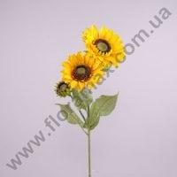 Цветок Подсолнух 72147