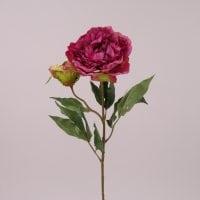 Цветок Пион марсаловый 72118