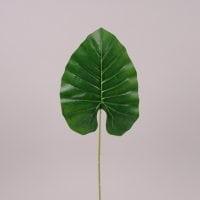 Лист Филодендрона зеленый 71905