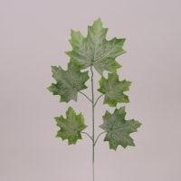 Листья Клена зеленые 71927