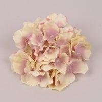 Головка Гортензії кремово-рожева 23791