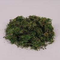 Мох декоративный зеленый 1 кг. 71950