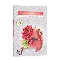 Свеча чайная таблетка ароматическая Bispol Цветок кактуса D-3,9 см. 6 шт. 27338