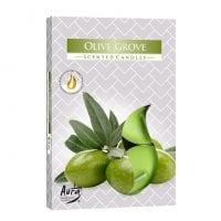 Свеча чайная таблетка ароматическая Bispol Оливковая роща D-3,9 см. 6 шт. 27344