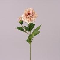 Цветок Пион розовый 71980