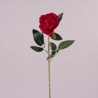 Квітка Троянда червона 72175