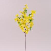 Квітка Форзиція 72259