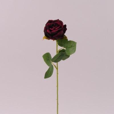 Фото Квітка Троянда бордова 72282