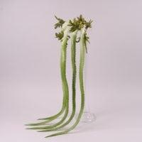 Ветка декоративная свисающая бело-зеленая 108 см. 72304