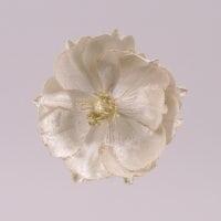 Цветок новогодний Магнолия кремовый 75695