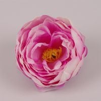 Головка Півонії біло-рожева 23829