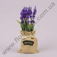 Лаванда в мешочке темно-фиолетовая 70674
