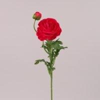 Цветок Камелия красный 72449