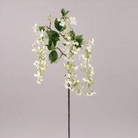 Цвет Яблони свисающий белый 72555