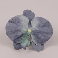 Головка Орхідеї Фаленопсис темно-блакитна 23836