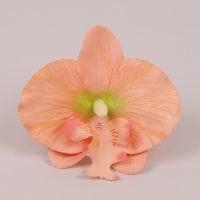 Головка Орхідеї Фаленопсис лососева 23837