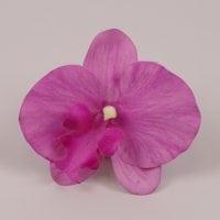 Головка Орхидеи Фаленопсис фиолетовая 23840