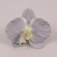 Головка Орхидеи Фаленопсис светло-голубая 23843