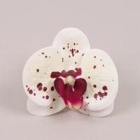 Головка Орхидеи Фаленопсис из латекса белая тигровая 23854