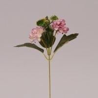 Цветок Бархотка светло-розовый 72479