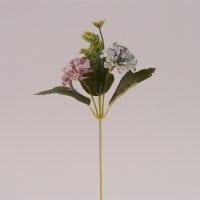 Цветок Бархотка светло-фиолетовый 72482