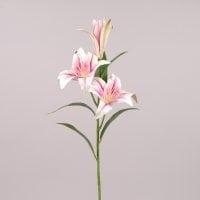 Квітка Лілія латекс рожева 72545