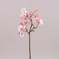 Яблуневий цвіт рожевий 72546