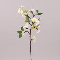 Яблуневий цвіт білий 72548