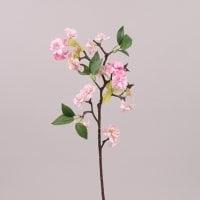 Яблуневий цвіт рожевий 72549
