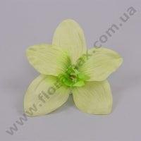 Головка Орхидеи зеленая 23383
