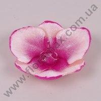 Свічка Orchidea Kwiat 24590