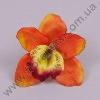 Головка Цимбидиума оранжевая 23575